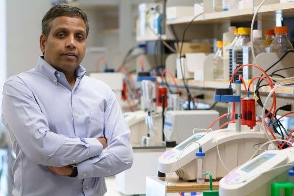 Sadasivan Vidyasagar, Department of Radiation Oncology, University of Florida College of Medicine